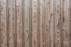 松木板条纹理背景 免版税库存图片
