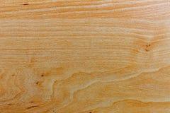 松木纹理是光 design_的准备 免版税库存照片