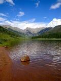 松树般茂盛的湖 免版税库存照片