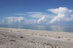 松的云彩在绿松石海洋反射 免版税图库摄影