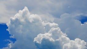 松的云彩 影视素材