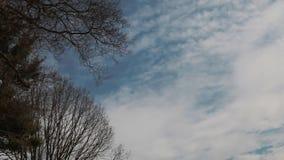 松的蓬松白色云彩天空蔚蓝移动云彩天空 股票录像