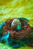 绿松石复活节彩蛋 库存照片