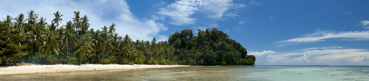 绿松石热带玻利尼西亚天堂棕榈滩海洋海水晶水婆罗洲印度尼西亚 库存图片