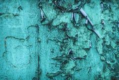 绿松石难看的东西2 免版税库存图片