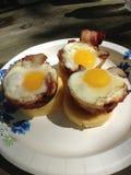松饼罐子鸡蛋 免版税库存照片