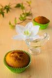 松饼,花,叶子 免版税库存照片