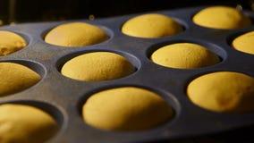 松饼 烘烤在烤箱 烹调杯形蛋糕时间间隔英尺长度  4k, UHD 影视素材