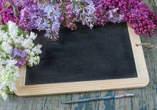 黑黑板和多彩多姿的淡紫色花 免版税库存图片