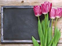 黑板和紫色郁金香在木背景 库存图片