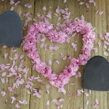 板岩和开花心脏 库存图片
