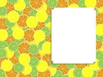 板料和柑橘 库存图片