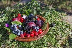 板材用新鲜的夏天莓果 库存图片