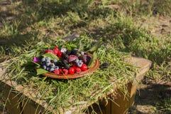 板材用新鲜的夏天莓果 图库摄影