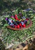 板材用新鲜的夏天莓果 库存照片
