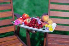 板材用新鲜水果和花在木 库存照片