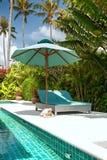 板条床,水池,棕榈树 图库摄影