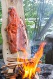 板条煮熟的三文鱼 免版税库存照片