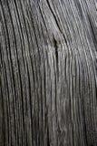 板条被风化的木 免版税库存照片