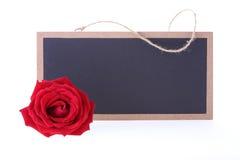 黑板标志空白与红色玫瑰的正文消息 库存图片