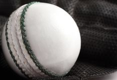 板球和手套。 免版税图库摄影