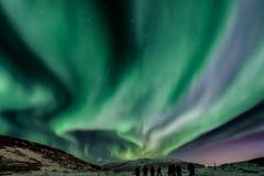 极光, borealis,北,光,星座,大,浸染工,北部,挪威,游人,吸引力,特罗姆瑟 免版税库存图片