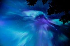 极光Borealis光环顶上与飞星 免版税库存照片