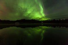 极光Borealis的反射在Olnes池塘的在费尔班克斯,阿拉斯加 免版税图库摄影