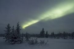 极光Borealis, Raattama, 2014年 02 21 - 01 免版税库存照片