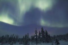 极光Borealis, Raattama, 2014年 02 21 - 29 库存照片