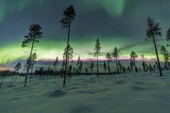 极光borealis (北极光)在芬兰,拉普兰森林 免版税库存图片