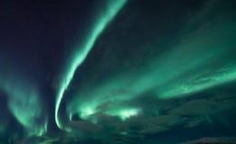 极光Borealis -斯堪的那维亚 免版税库存图片