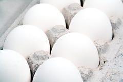极其特写镜头十二的鸡蛋 免版税库存照片
