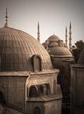 极大的伊斯坦布尔清真寺 库存图片