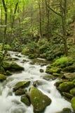 极大的发烟性山的国家公园 免版税库存照片