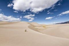 极大的沙丘国家公园,科罗拉多,美国 免版税库存图片