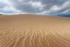 极大的沙丘 库存图片