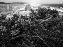 极大的海洋路,维多利亚,澳洲 免版税库存照片