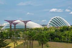 极大的温室在滨海湾公园,新加坡 库存图片
