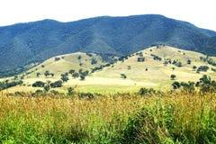 极大的高山路。 澳大利亚横向 免版税库存图片