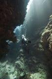 极大障碍的潜水 库存照片