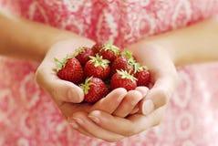 极少数草莓 免版税库存图片