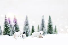 极性的圣诞节和北美灰熊在斯诺伊冬天森林-克里斯里 免版税库存照片