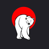 极性wite熊 免版税库存照片