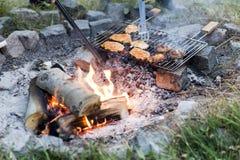 极热的夏天BBQ 免版税库存图片