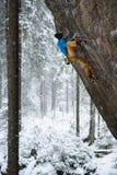 极端冬季体育上升 在岩石墙壁上的年轻男性攀岩运动员 背景的斯诺伊森林 图库摄影