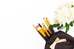 构成刷子和菊花在白色背景开花 图库摄影