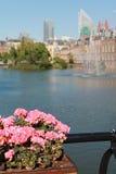 构成小室荷兰语haag全景议会 走在beautyful公园 免版税库存照片