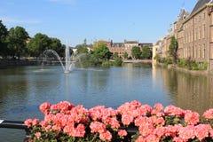 构成小室荷兰语haag全景议会 走在beautyful公园 库存图片