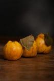 构成柑橘 免版税图库摄影